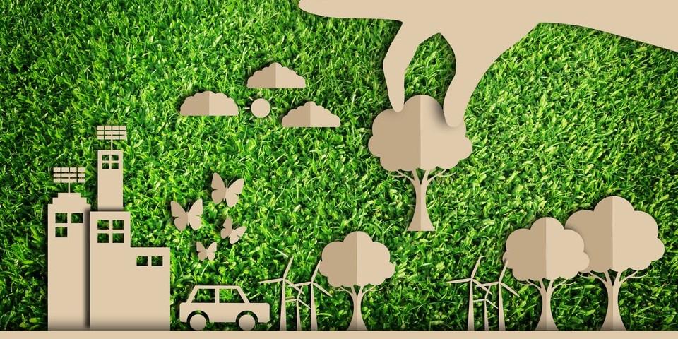 Dicas de consumo consciente que você precisa conhecer - Grupo Quality  Ambiental